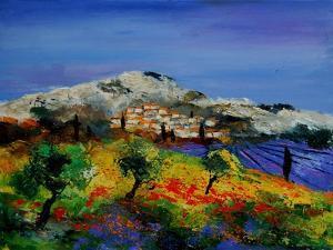 Provence 569010 by Pol Ledent