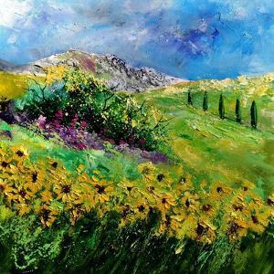 Provence 6641 by Pol Ledent