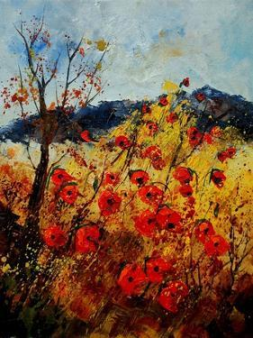 Red Poppies in Provence 45 by Pol Ledent