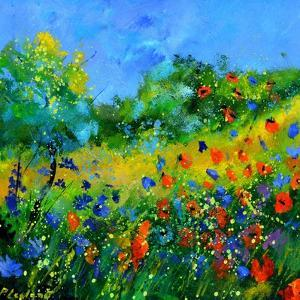 Red poppies by Pol Ledent