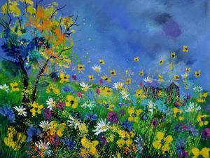 Summer 564121 by Pol Ledent