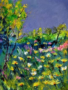 Summer 569031 by Pol Ledent