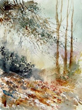 Watercolor 080605 by Pol Ledent