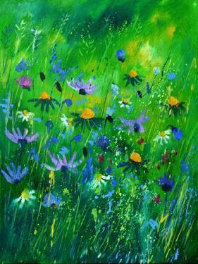 Wild Summer Flowers by Pol Ledent