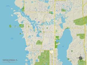 Political Map of Tarpon Springs, FL