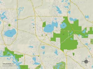 Political Map of Wauconda, IL