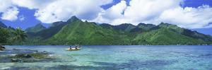 Polynesian People Rowing a Yellow Outrigger Boat in the Bay, Opunohu Bay, Moorea, Tahiti, French...