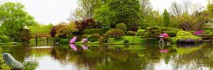 Pond in a garden, Missouri Botanical Garden, St. Louis, Missouri, USA