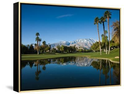 Pond in a Golf Course, Desert Princess Country Club, Palm Springs, Riverside County, California