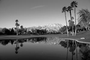 Pond in a golf course, Desert Princess Country Club, Palm Springs, Riverside County, California...
