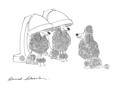 https://imgc.allpostersimages.com/img/posters/poodle-dogs-under-hair-drying-matchines-cartoon_u-L-PGR2K50.jpg?artPerspective=n