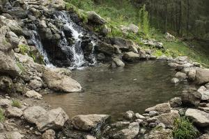 Pool of a natural Hot Spring High in the Jemez Mountains