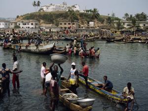 Fishermen Bringing Catch Ashore, Elmina, Ghana, West Africa, Africa by Poole David