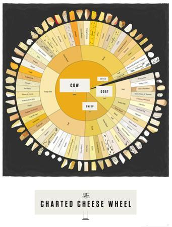 The Charted Cheese Wheel by Pop Chart Lab