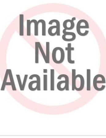 Baseball Umpire Yelling Play Ball by Pop Ink - CSA Images