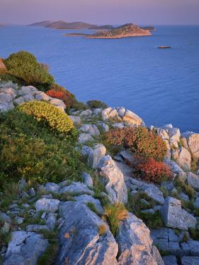 Coastal Landscape, Kornati National Park, Mana Island, Croatia, May 2009 Wwe Book by Popp-Hackner