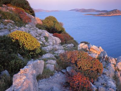 View from Mana Island South Along the Islands of Kornati National Park, Croatia, May 2009 by Popp-Hackner