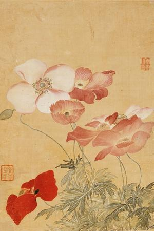 https://imgc.allpostersimages.com/img/posters/poppies-leaf-from-an-album-of-flower-paintings_u-L-PT5A380.jpg?p=0