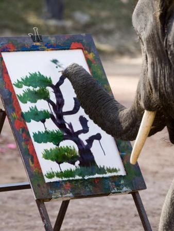 Elephant Painting, Chiang Mai, Thailand, Southeast Asia