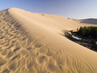 Sand Dunes and Oasis, Desert, Dunhuang, Gansu, China