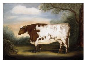 Durham Cow by Porter Design