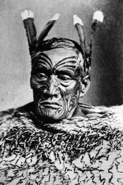 Portrait of a Maori Man, before 1880
