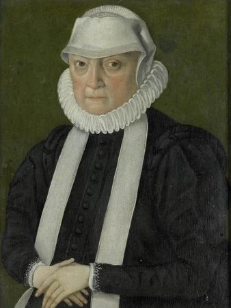 https://imgc.allpostersimages.com/img/posters/portrait-of-a-woman-probably-anna-jagellonia-queen-of-poland-possibly_u-L-Q1147XP0.jpg?p=0