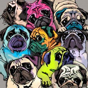 Portrait of Many Pugs. Composition in a Bright Coloring Pop Art Style. Humor Card, T-Shirt Composit