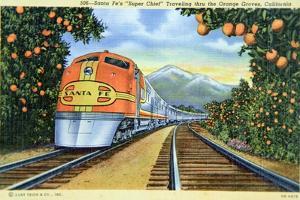 Postcard of the 'Super Chief' of the Santa Fe Railroad, Passing Through Orange Groves, 1950S