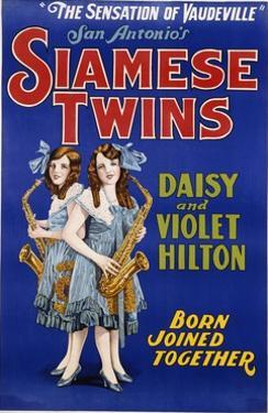 Poster Advertisement for Siamese Twins Daisy and Violet Hilton