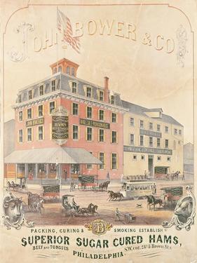 Poster Advertising 'John Bower and Co. Superior Sugar Cured Hams'