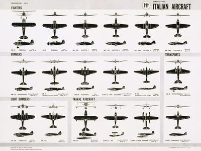 https://imgc.allpostersimages.com/img/posters/poster-of-italian-combat-and-transport-aircraft_u-L-PZMB3W0.jpg?p=0