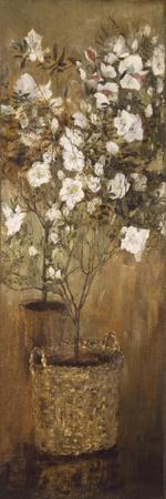 https://imgc.allpostersimages.com/img/posters/pots-of-azaleas-1884-1885_u-L-PPBW580.jpg?p=0