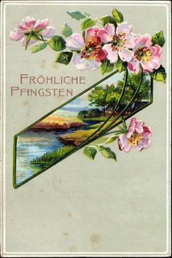 Präge Litho Glückwunsch Pfingsten, Apfelblütenzweig