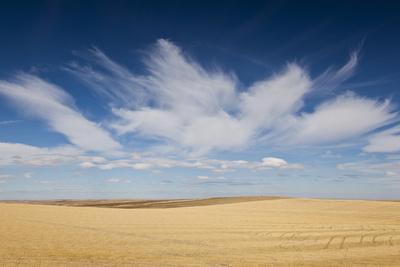 https://imgc.allpostersimages.com/img/posters/prairie-landscape-murdo-south-dakota-usa_u-L-PN6VZ40.jpg?p=0