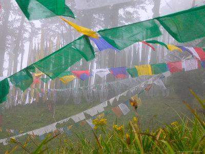 https://imgc.allpostersimages.com/img/posters/praying-flags-in-the-dochula-pass-between-wangdi-and-thimphu-bhutan_u-L-P58CBO0.jpg?p=0