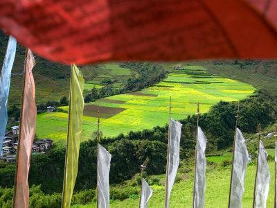 https://imgc.allpostersimages.com/img/posters/praying-flags-with-village-and-farmlands-at-pepe-la-pass-phobjikha-valley-gangtey-bhutan_u-L-P58CLG0.jpg?p=0