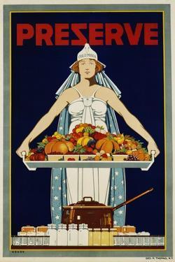 Preserve War Effort Poster with Figure of Columbia