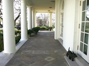 President Bush's Scottish Terrier Miss Beazley Plays on the Colonnade