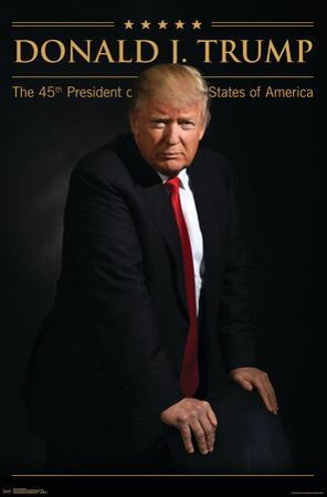 President of the United States - Donald Trump, 45th POTUS
