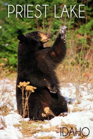 https://imgc.allpostersimages.com/img/posters/priest-lake-idaho-bear-playing_u-L-Q1GQOM50.jpg?p=0