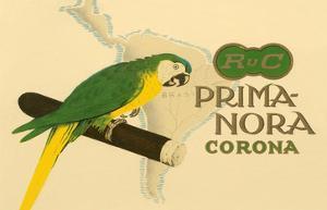 Prima-Nora Cigar Label, Parrot