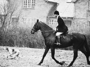 Prince Charles Prince of Wales Going Hunting on His Horse with His Dog March 1981