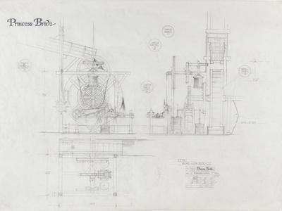 https://imgc.allpostersimages.com/img/posters/princess-bride-the-movie-the-machine-illustration_u-L-PNH0YQ0.jpg?artPerspective=n