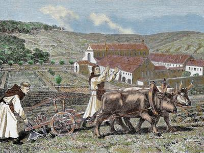Monks Plowing the Land with Oxen, Germany (1872)