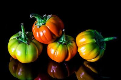 Colorful Eggplant Vegetable on Black Background by pritsadee