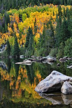 Bear Lake Fall Colors by Priyanka Haldar Photography