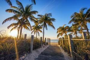 Famous Passage to the Beach by prochasson