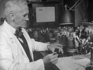 Prof. Alexander Fleming Working in Laboratory