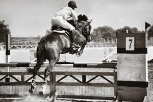 Horse Theme: Jockeys, Horse Races, Speed. by prometeus